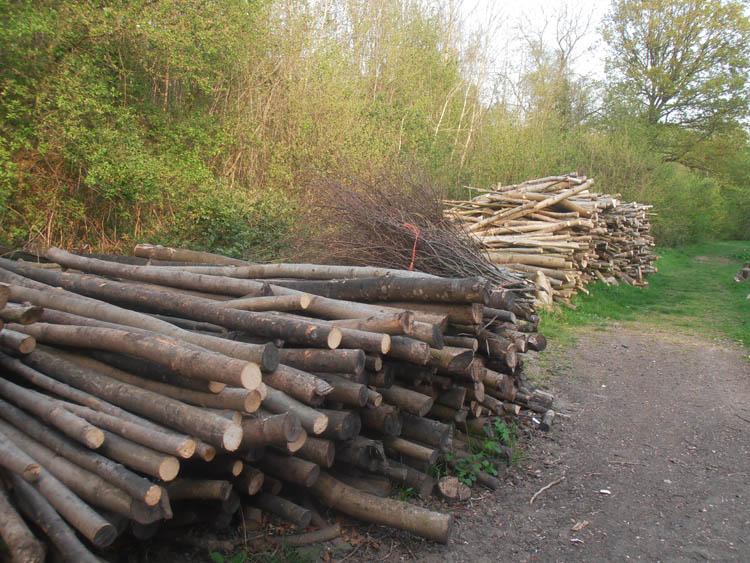 Ash poles, pea sticks and firewood