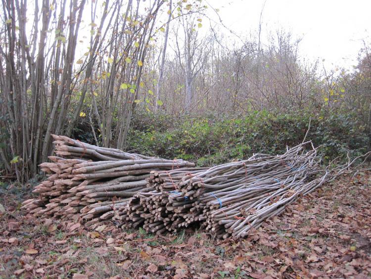 Bundles of stakes and binders