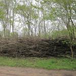 Dead hedging