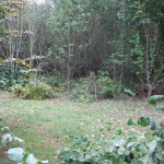 New woodland - scalloping and covering stools