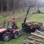 Unloading ash coppice